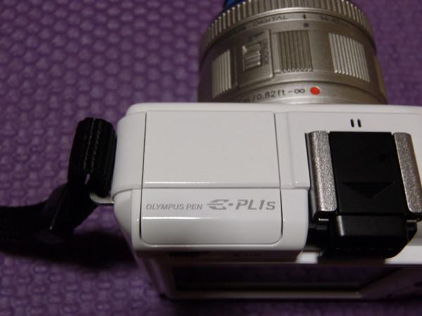 PA110240.JPG